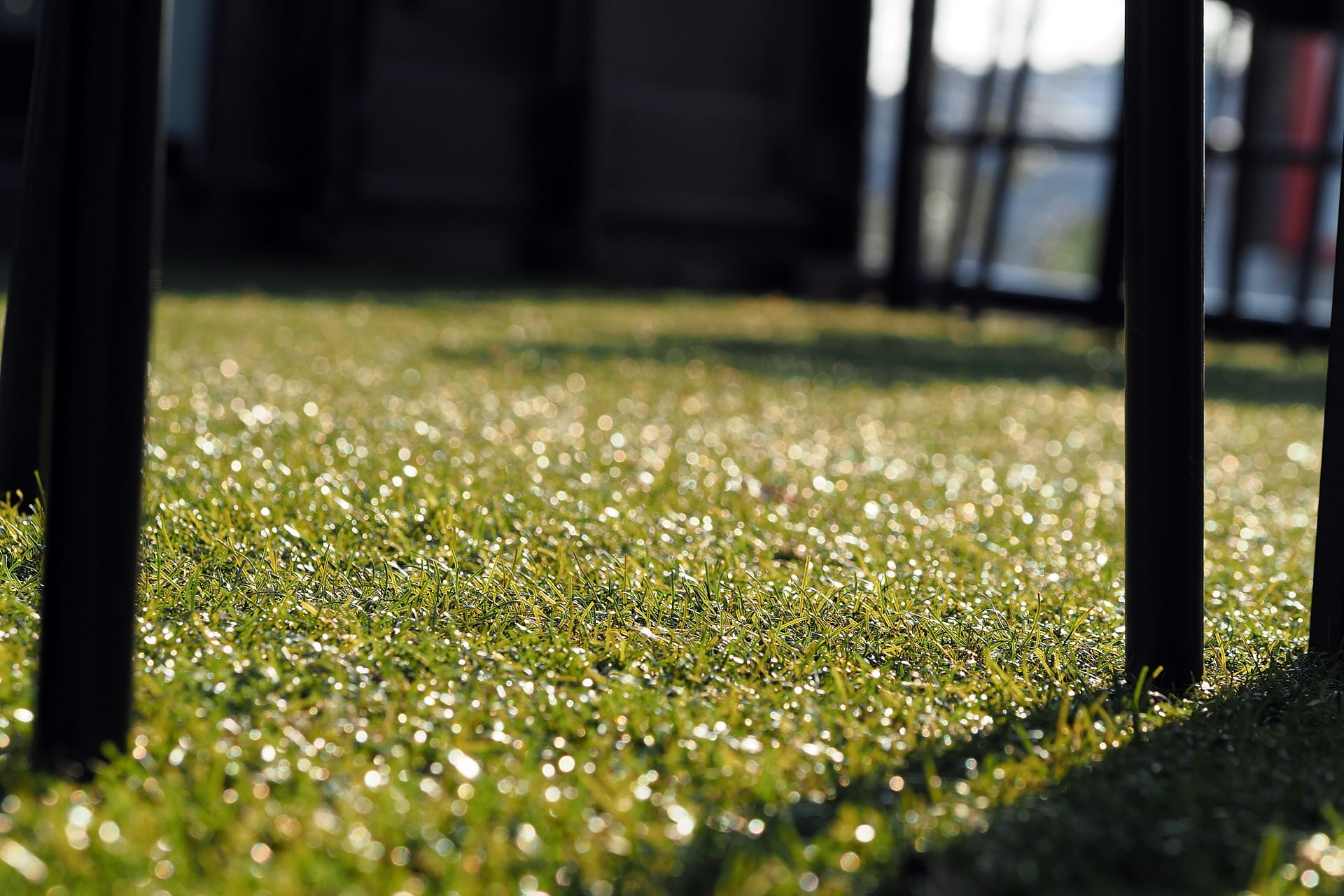 Cost of Artificial Grass Cost, Grass Installation Price - Artificial Grass Prices